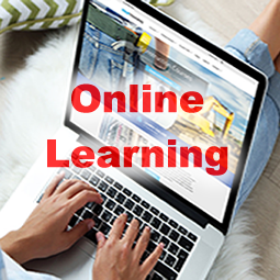 Online Learning (Mathematics)